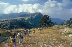 Parco del Pollino Trekking